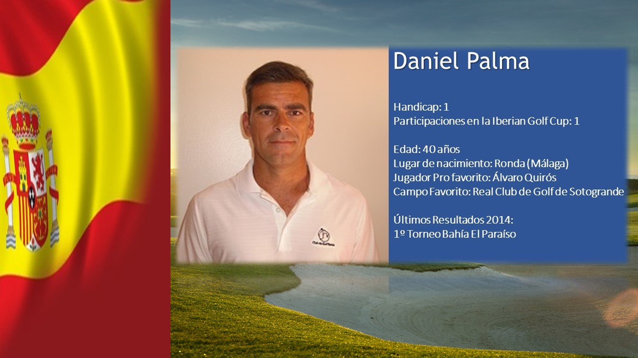 perfil web de dani