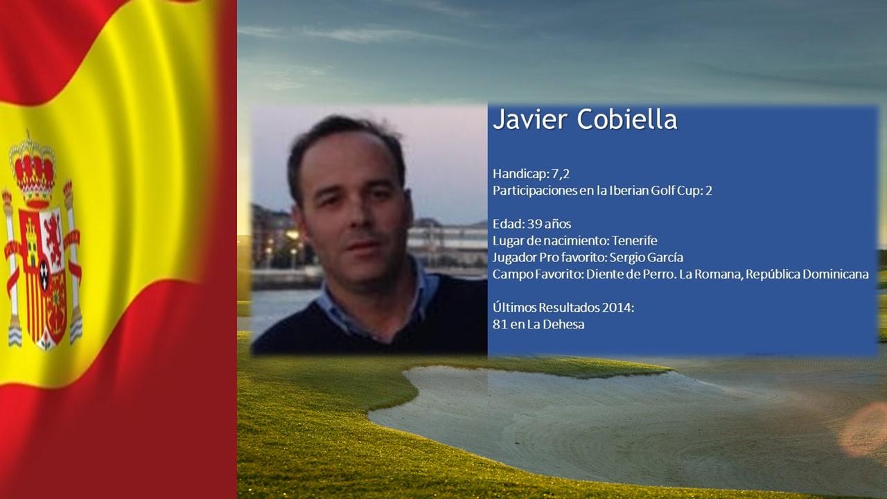 perfil web de javier cobiella